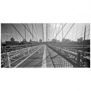 Kader Brooklyn Bridge